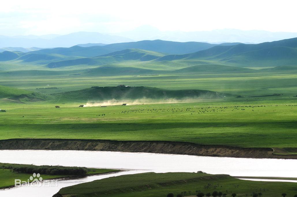 有一位藏妇带着两个藏族小孩儿在放牧。兄妹二人不过三、五岁,在草地上捡着什么,红红的脸蛋儿,打着高原的印记,十分可爱。我拿出两快巧克力糖送给他们,哥哥竟然说了句汉语谢谢,让我高兴的又把背袋里两个苹果掏出来赏给他们。随便问藏族少妇牧了多少牦牛,二百多头吧,那位藏族少妇笑着说。我放眼草地上的牛群直颌首啧叹。蓦然想起网上一则笑话:说大学两位知己同学,一位是官二代,一位是牧二代。该交学费啦,官二代怜悯牧二代穷,说我爸有权这点钱替你交了。牧二代说不好意思,我让老爹再卖头牛吧!粗一合计,就这家藏民来讲就有百万